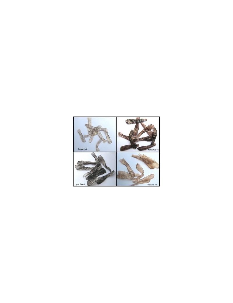 Ailes de sedge brun foncé