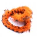 Bandelettes lapin zébrées orange