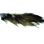 1/4 de lancette Whiting Pardo brun foncé