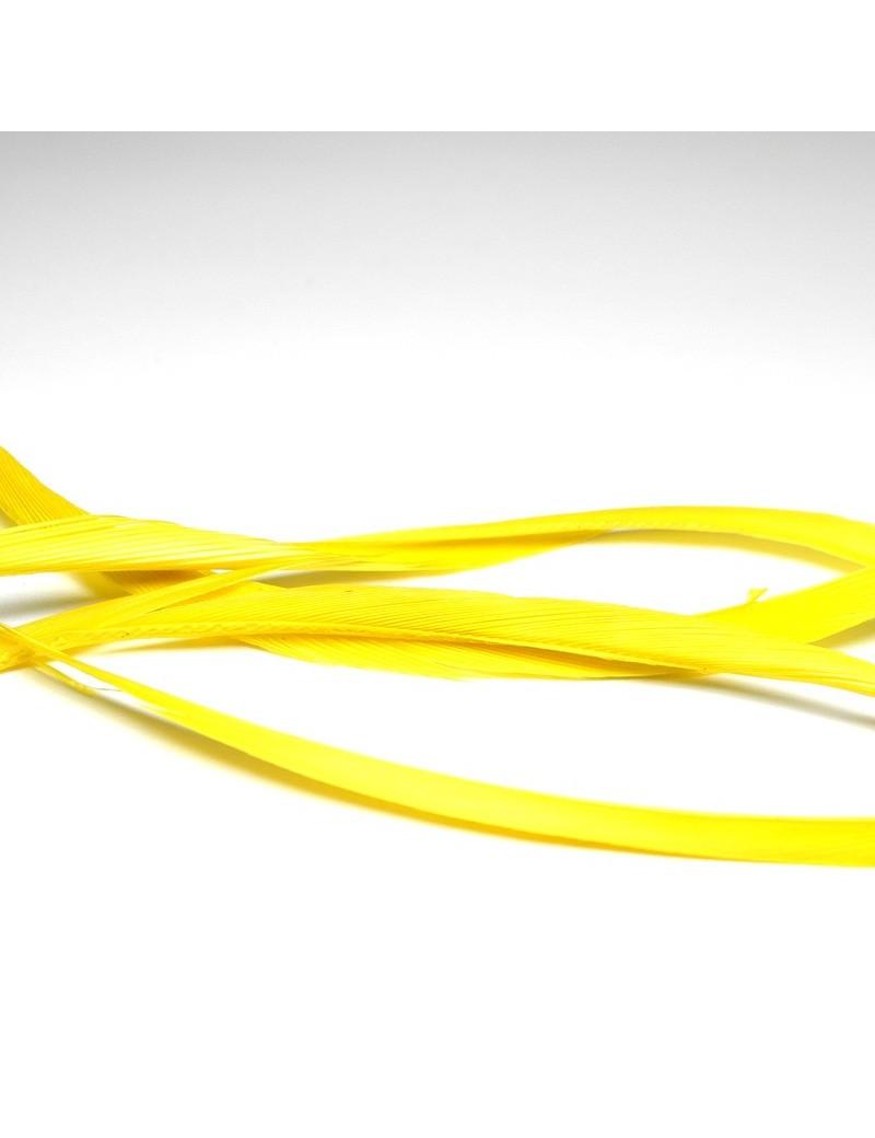 Biots d'oie jaune fluo-99