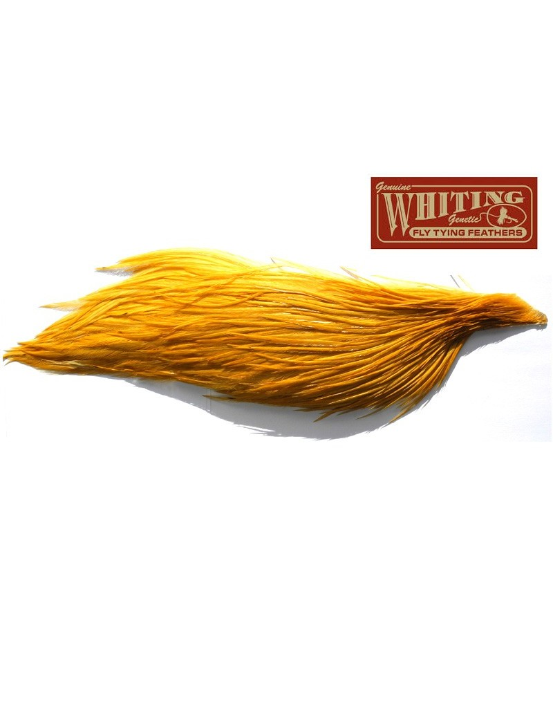1/2 cou de coq Whiting high dry ginger