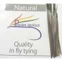 Polish quill naturel