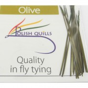 Polish quill olive
