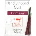 Polish quill crimson