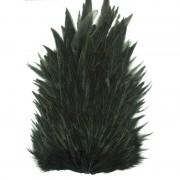 Saddle Whiting noir
