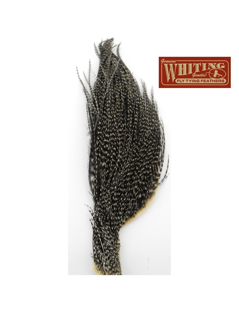 1/2 cou Whiting grizzly variant foncé