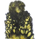 Cou de poule Chickabou whiting oliveclair