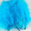 Marabout Bleu-31