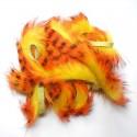 Bandelettes lapin zébrées jaune orange