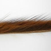 Bandelettes de rat musqué brun roux-35