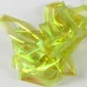 Shellback Olive clair-134