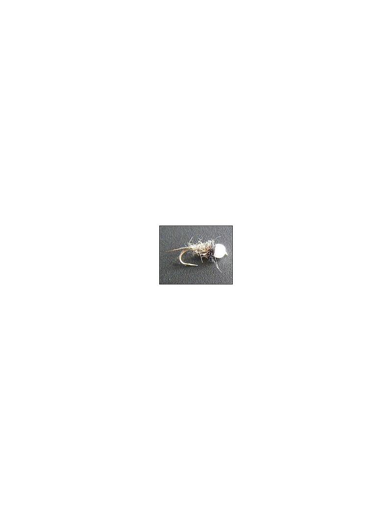 Nymphe tungstene blanche 1
