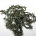 chenille woolly olive foncé