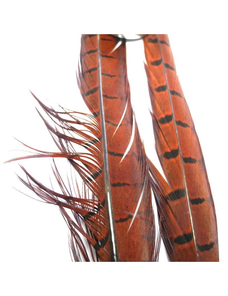 Paire de plumes de faisan rouge-35