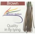 Polish quill marron