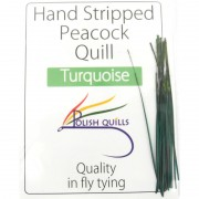 Polish quill  turquoise