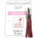Polish quill rose clair