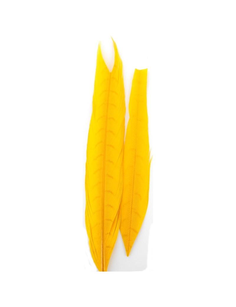 Paire de plumes de faisan jaune-06