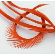 Biots d'oie orange-35