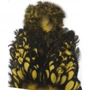 Cou de poule Chicka whiting goldenolive