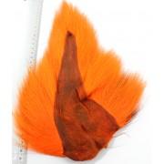 Bucktail orange