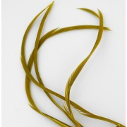 Biots d'oie golden olive Veniard