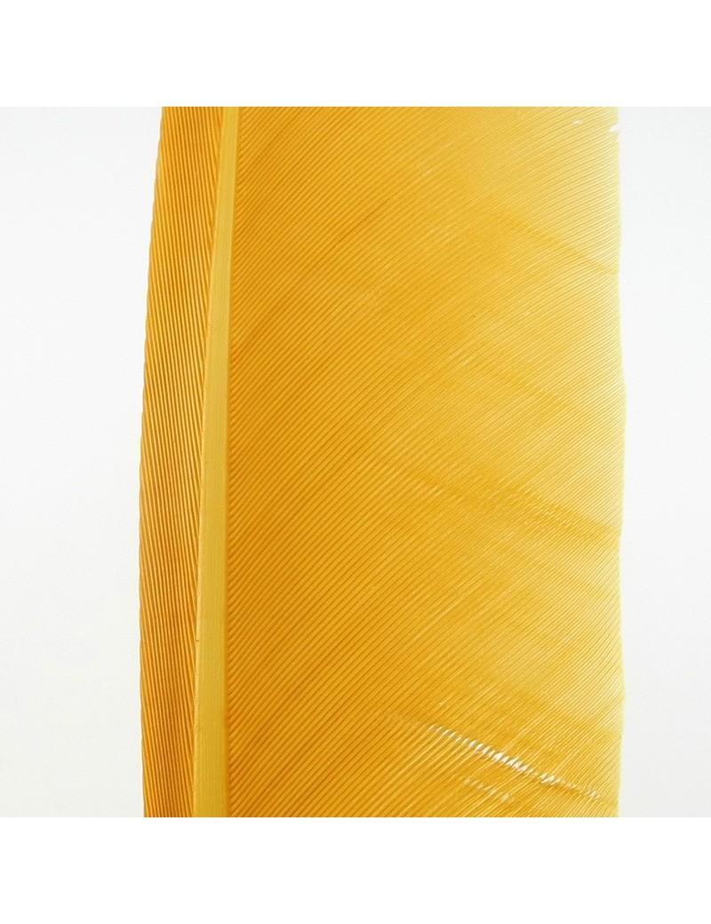 Plume de dinde yellowish tan
