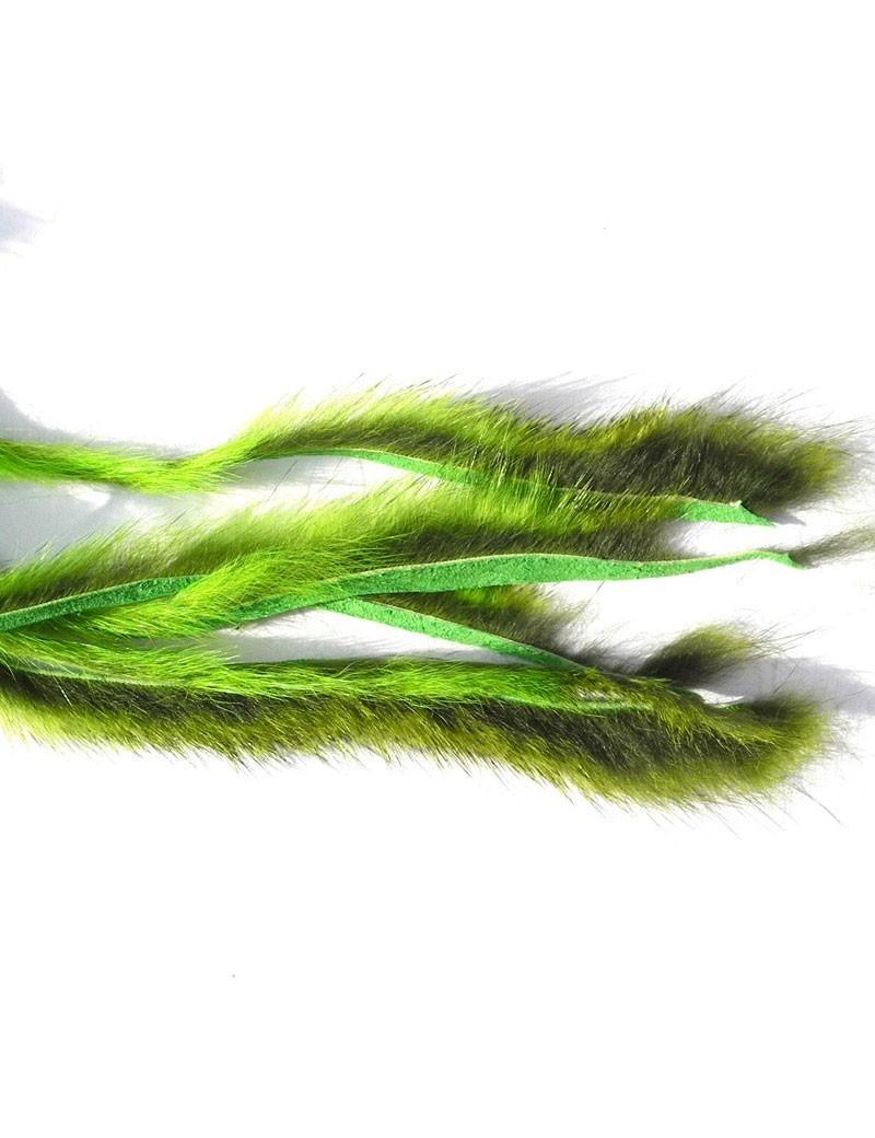 Micro bandelettes d'écureuil chartreuse
