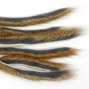 Micro bandelettes d'écureuil Naturel