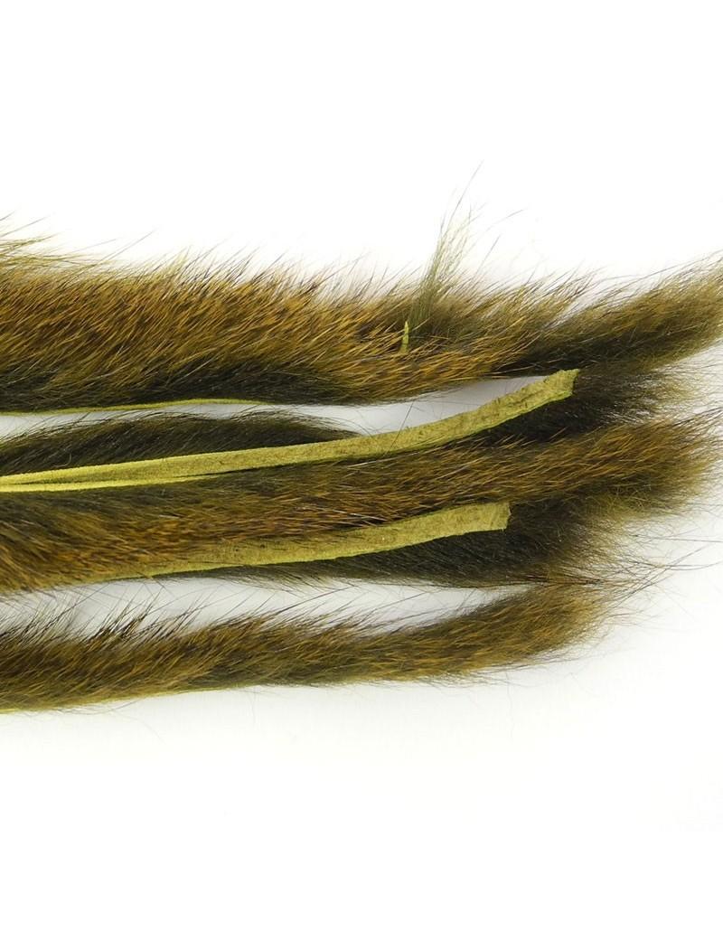 Micro bandelettes d'écureuil Olive