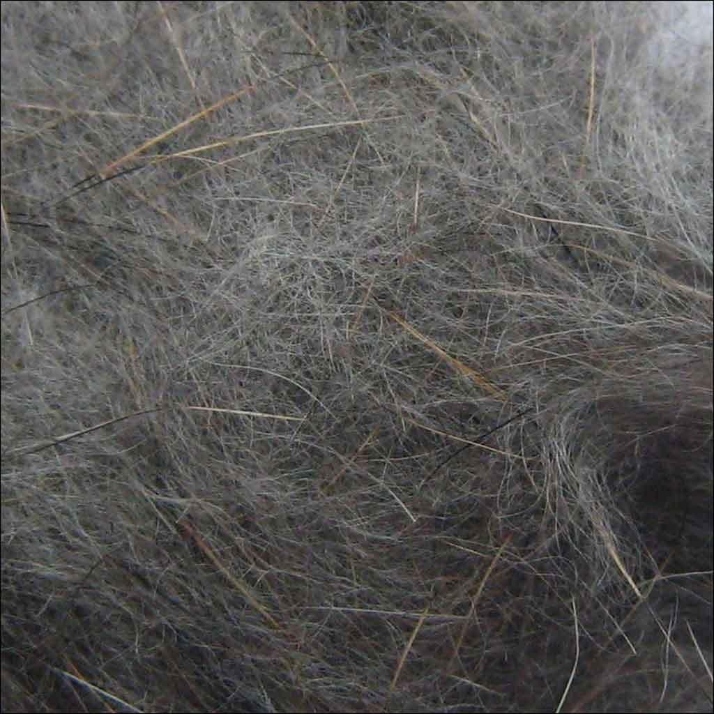 Lièvres Oreille doublage Gris