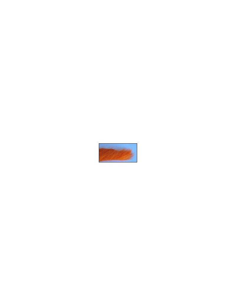 Bandelettes lapin Orange-03