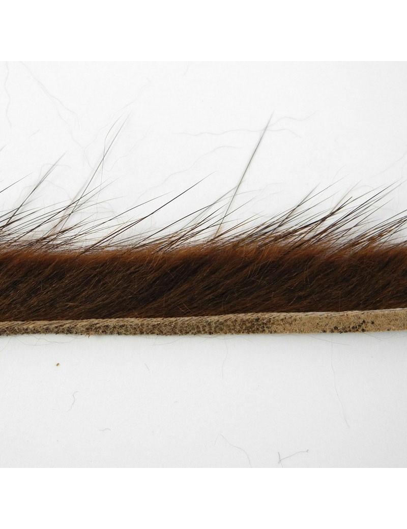 Bandelettes de rat musqué marron-12