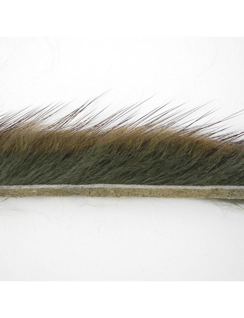 Bandelettes de rat musqué vert brun-07