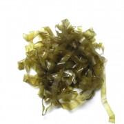 Body stretch Golden Olive-35