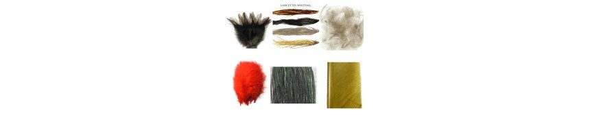 Plumes-Quill-Biots