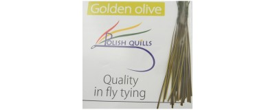 Polish quill-Quill synthétiques-Herl de Paon